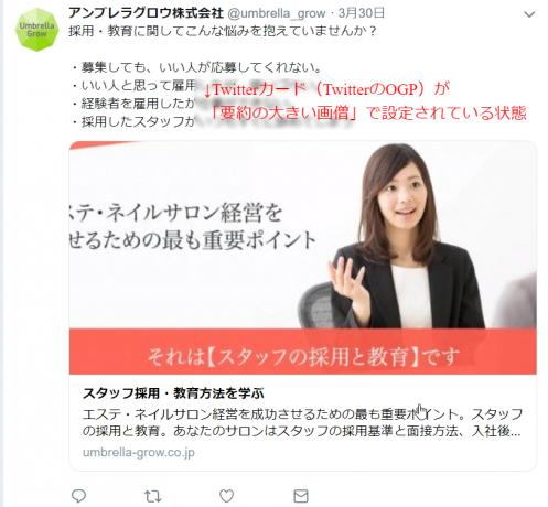TwitterカードOK例